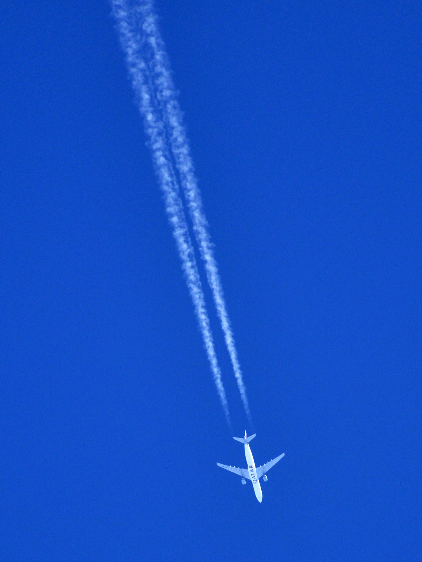 İsim:  Qatar_A330_QTR73EE.jpg Görüntüleme: 252 Büyüklük:  1.53 MB (Megabyte)